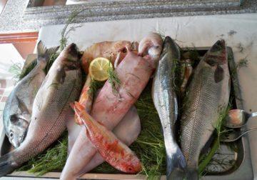 Demand for B.C. Seafood growing globally