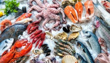 Processed Seafood & Seafood Processing Equipment Market Research